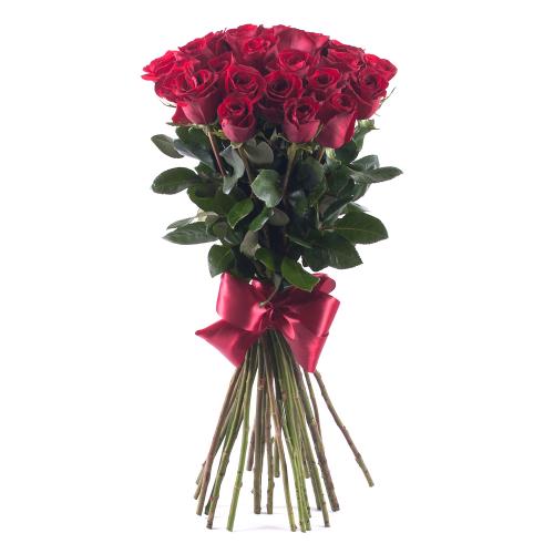 Amore červené ruže