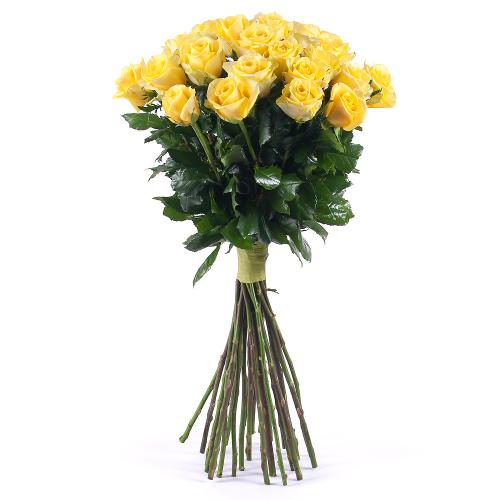 Amore žlté ruže