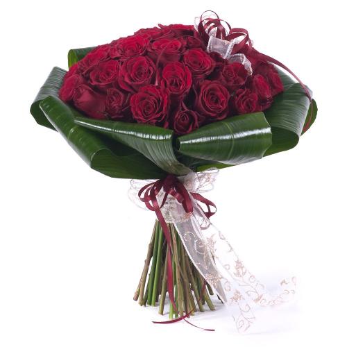 Perla červené ruže