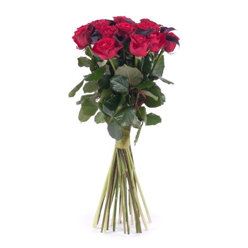 Amore červené ruže a kaly