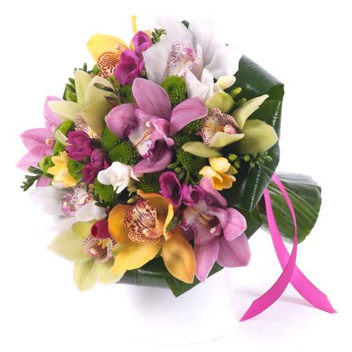 Lady farebné orchidey