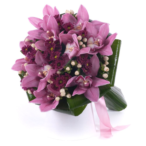Lady ružová orchidea