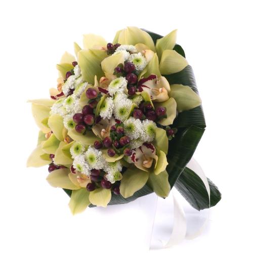 Lady zelená orchidea
