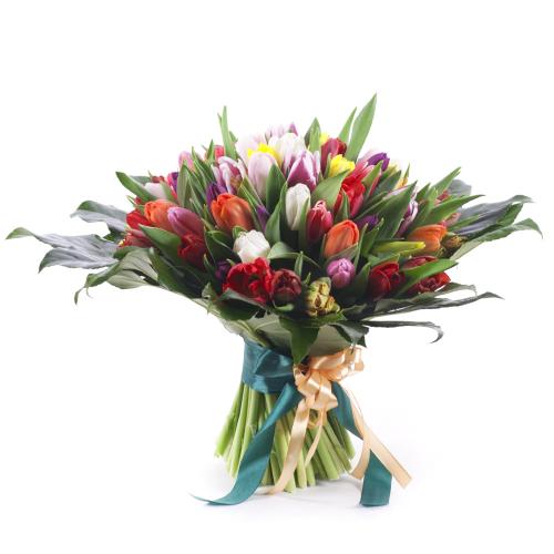 Perla farebné tulipány