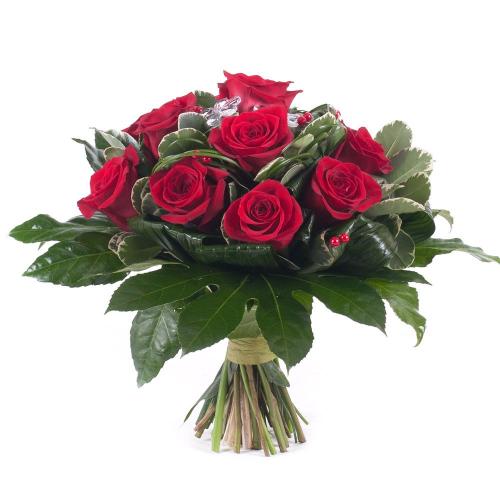 Elite červené ruže