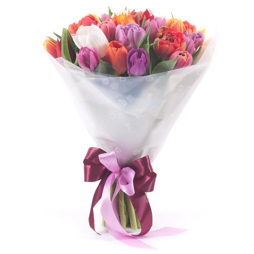 Sweet farebné tulipány pure