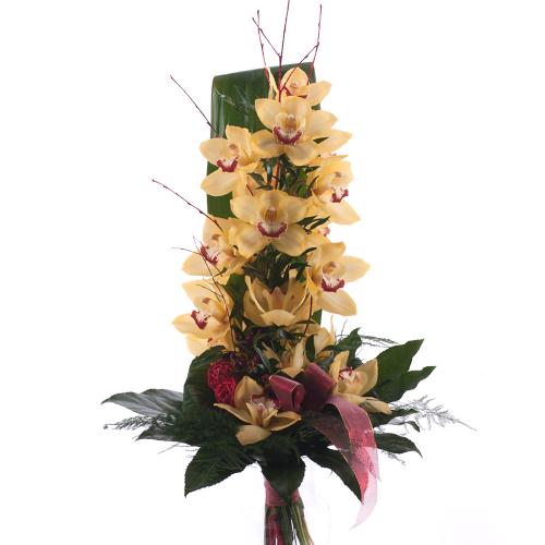 Orchidea žltá na vysoko