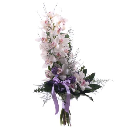 Orchidea biela na vysoko