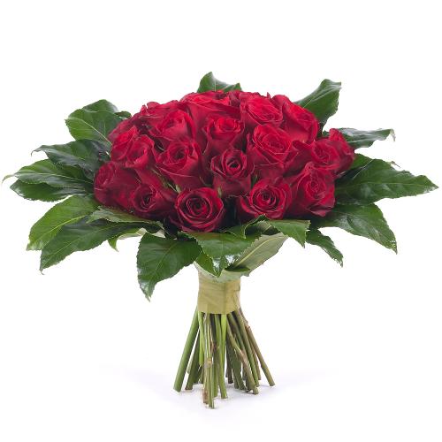 Passion červené ruže