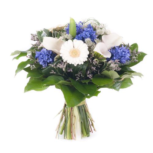 Elite modré hyacinty a biele minigerbery