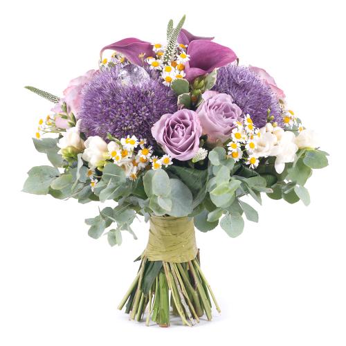 Elite modré allium a fialové ruže s kamilkami