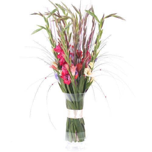 Amore farebné gladioly