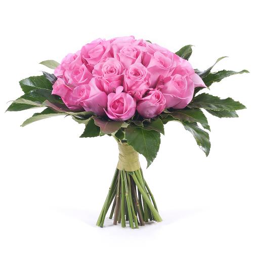 Passion ružové ruže