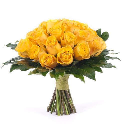 Passion žlté ruže