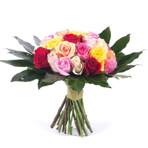 Passion farebné ruže