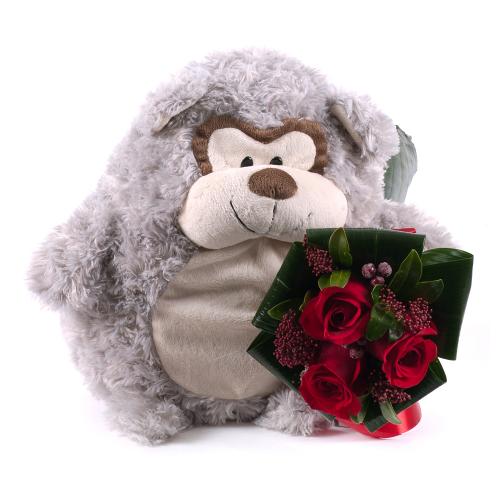 Červené ruže s opičkou