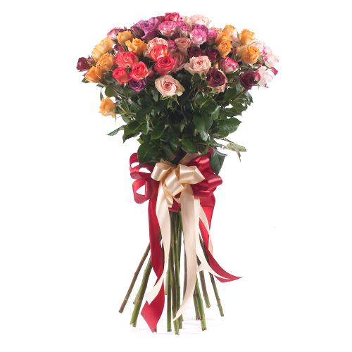 Amore farebné trsové ruže