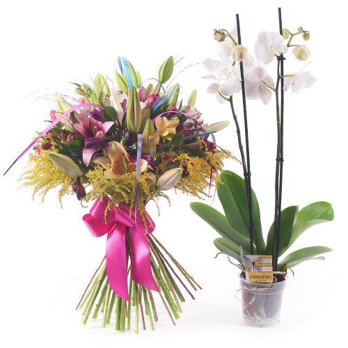 Sweet farebné ľalie a alstromérie + Phalaenopsis grátis
