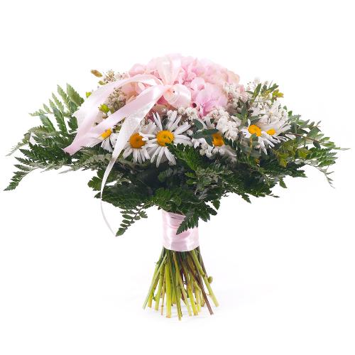 Elite ružová hortenzia a biele margaretky