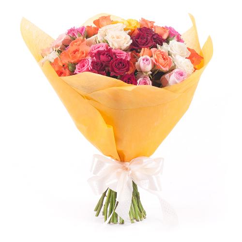 Sweet trsové farebné ruže